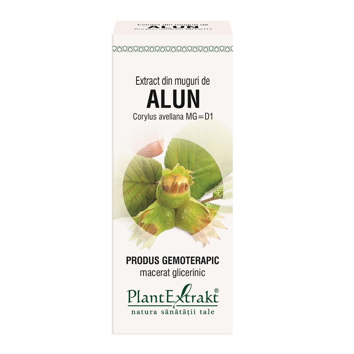 Extract din muguri de Alun, 50 ml, Plant Extrakt