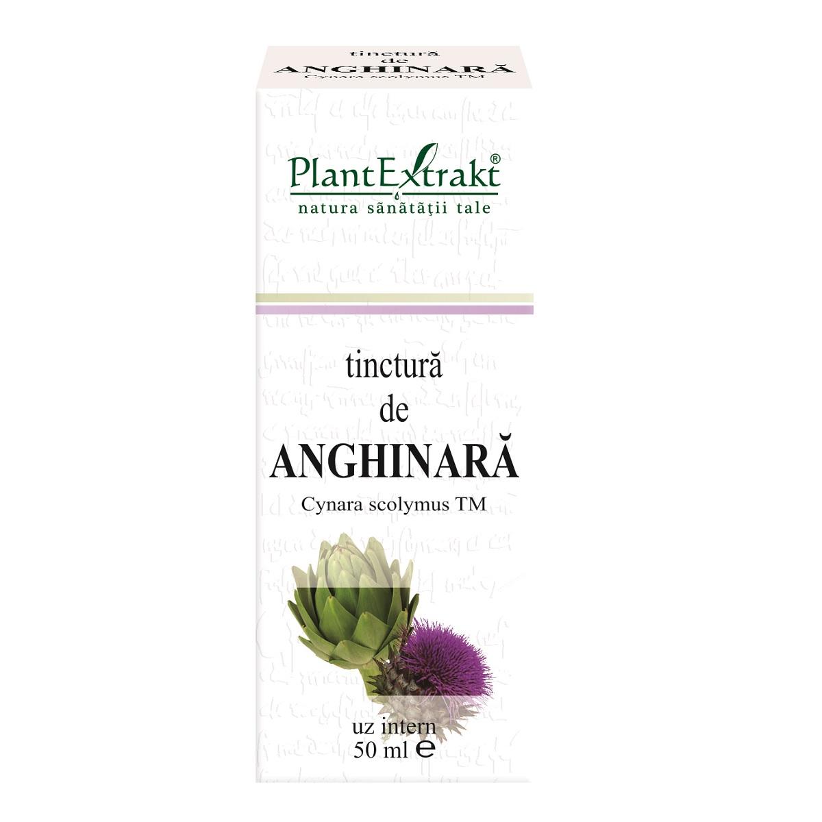 Tinctură de Anghinară, 50 ml, Plant Extrakt