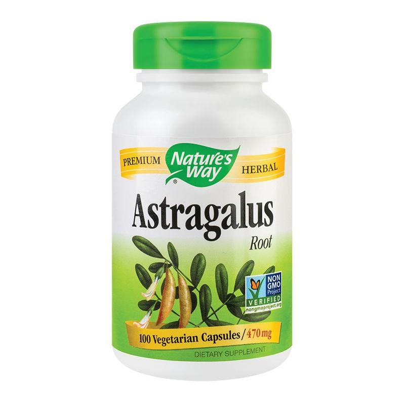 Astragalus Root  Natures Way, 100 capsule, Secom