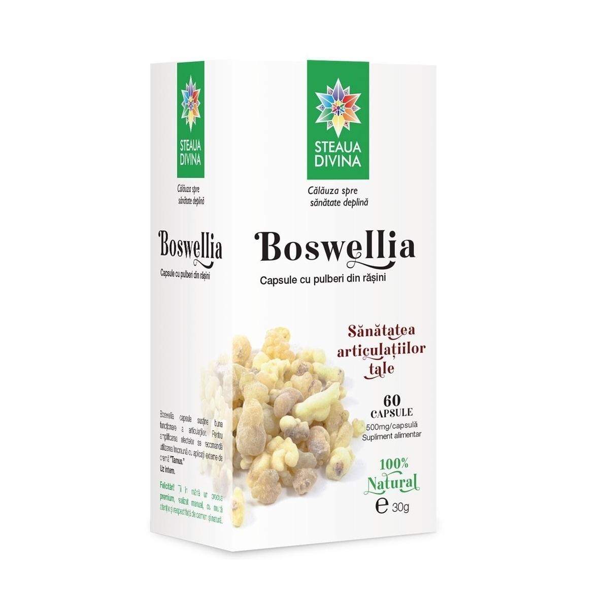 Boswellia, 60 capsule, Steaua Divină