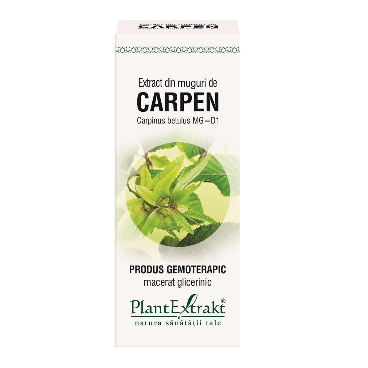 Extract din muguri de Carpen, 50 ml, Plant Extrakt