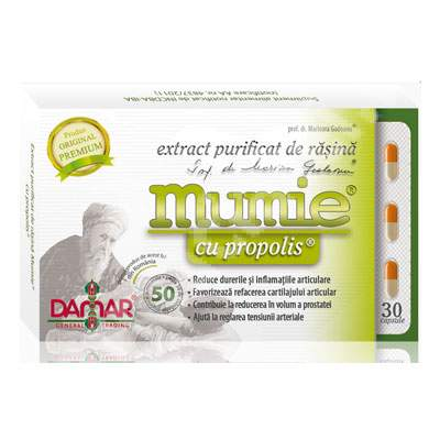 Extract purificat de rasina Mumie cu Propolis, 30 capsule, Damar General Trading