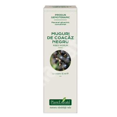 Muguri de Coacaz Negru, 15 ml, Plant Extrakt