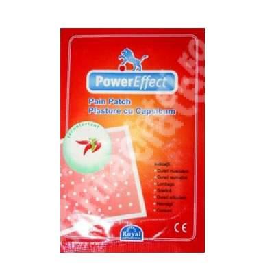 Plasture antireumatic Hot Power Effect, 1 bucata, China