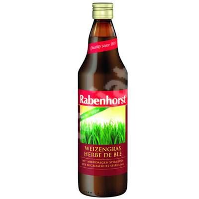 Suc Bio de Grau Verde, 750 ml, Haus Rabenhorst