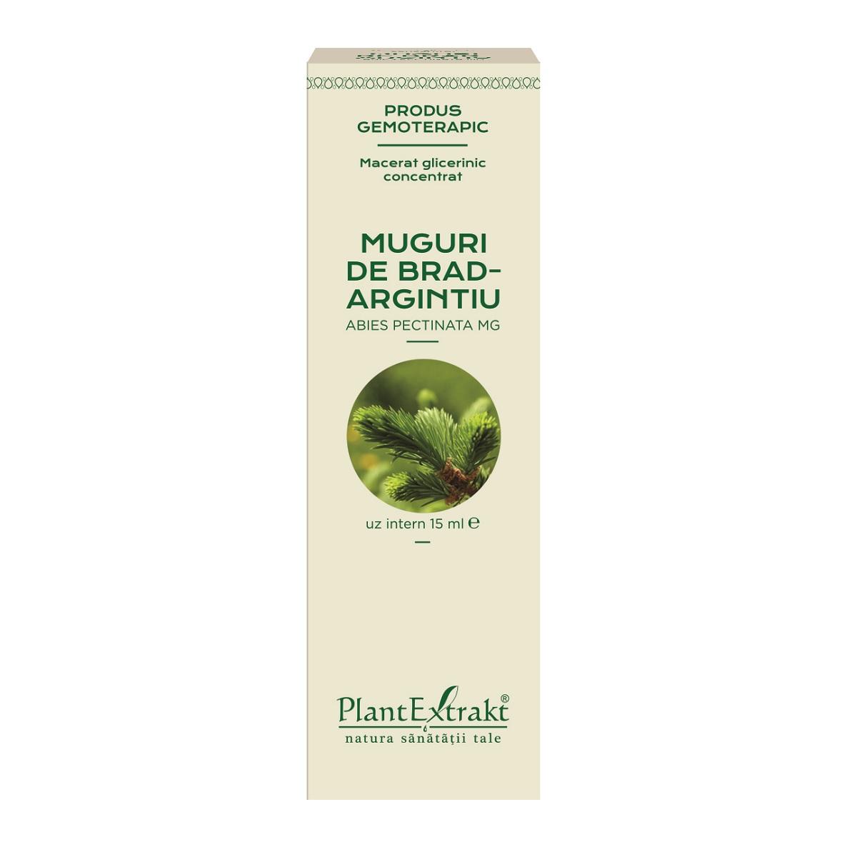 Muguri de Brad Argintiu, 15 ml, Plant Extrakt