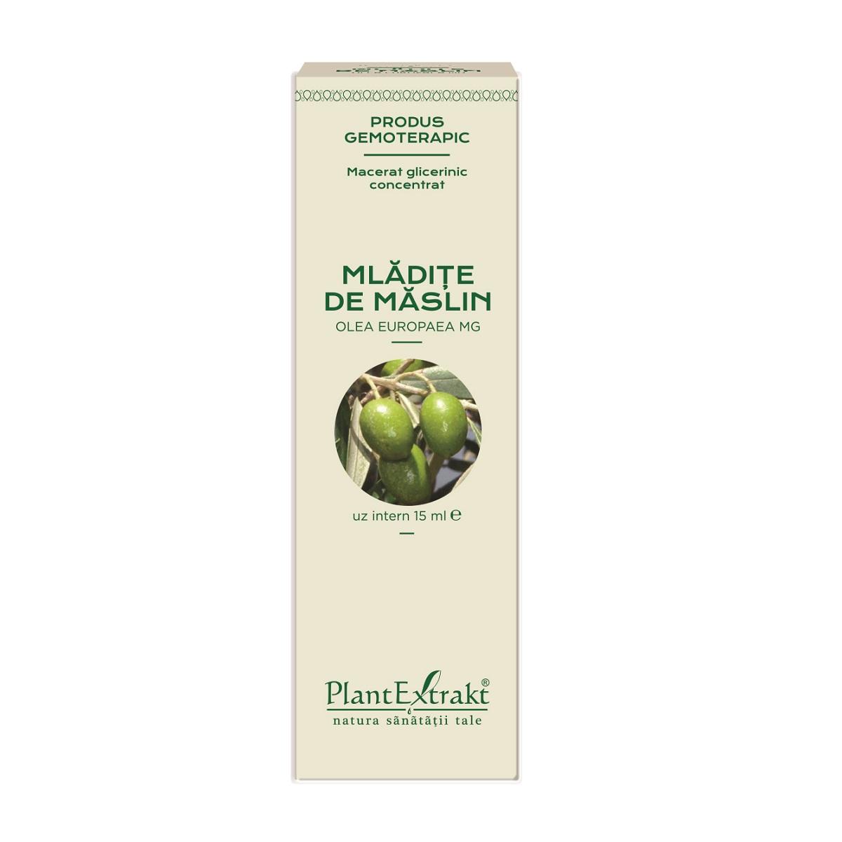 Mlădițe de Măslin, 15 ml, Plant Extrakt