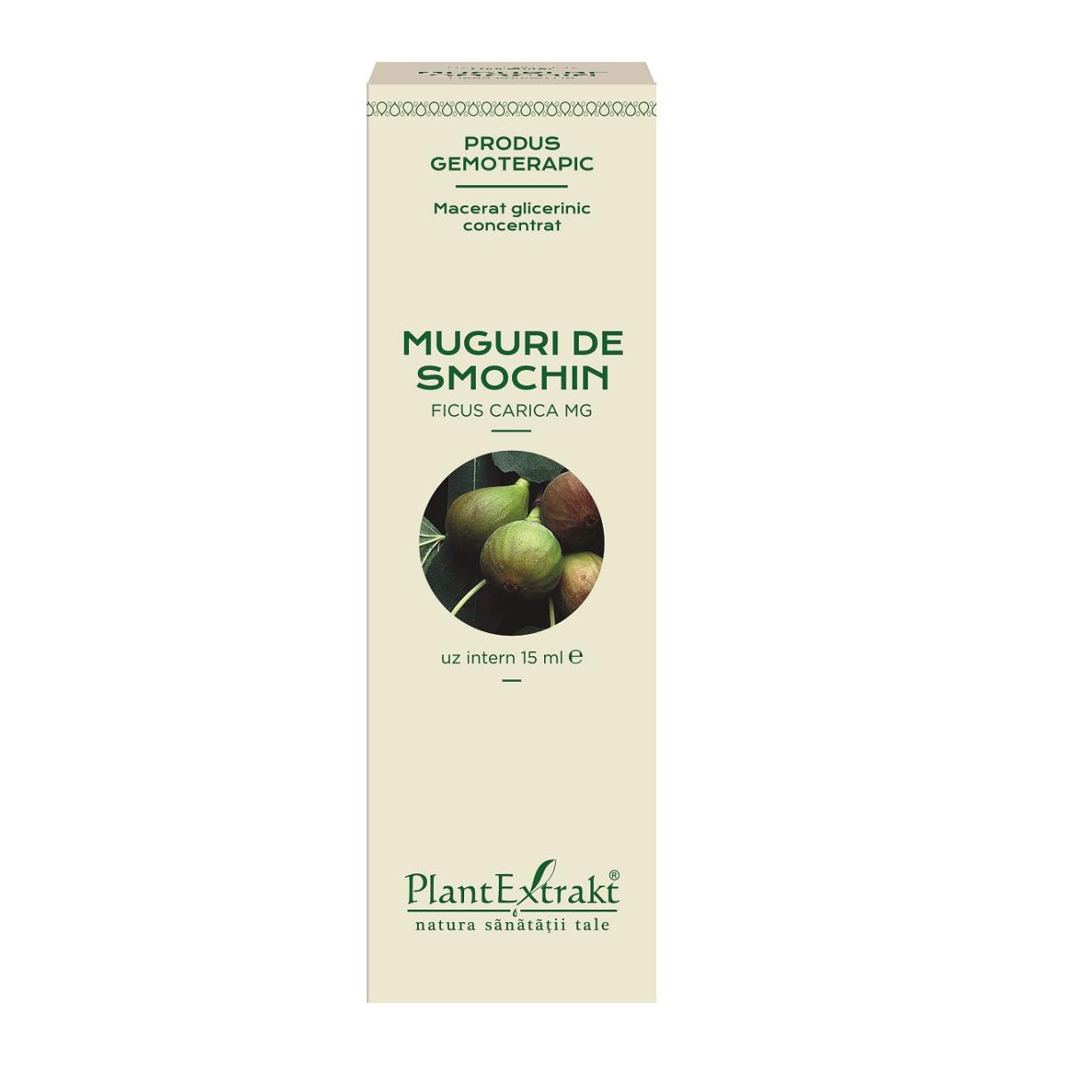 Muguri de smochin, 15 ml, Plant Extrakt