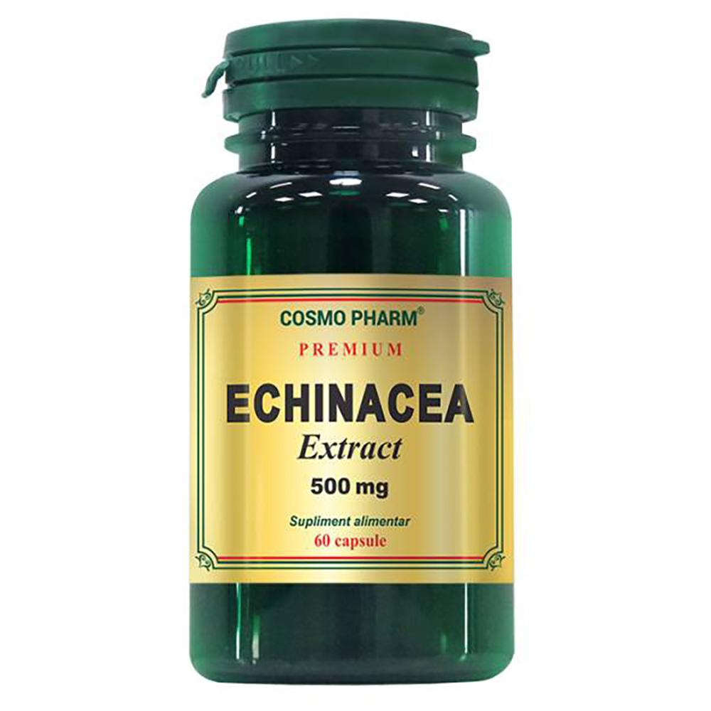 Echinacea Extract 500mg, 60 capsule, Cosmopharm