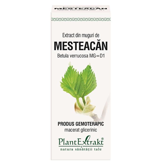 Extract din muguri de Mesteacăn Pufos, 50 ml, Plant Extrakt
