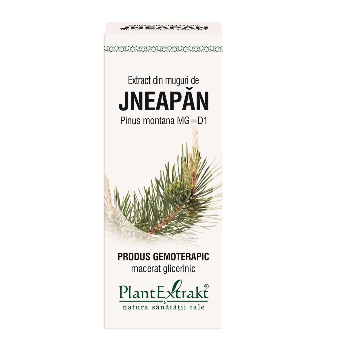 Extract din muguri de Jneapăn. 50 ml, Plant Extract