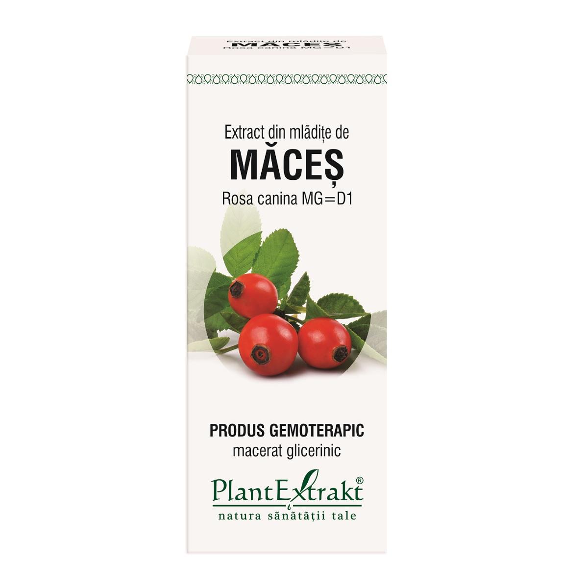 Extract din mlădite de Maceș, 50 ml, Plant Extract