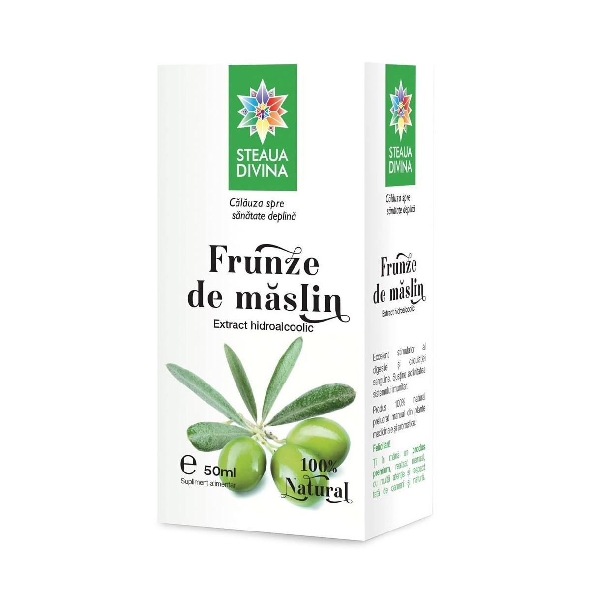 Tinctură de măslin, 50 ml, Steaua Divină