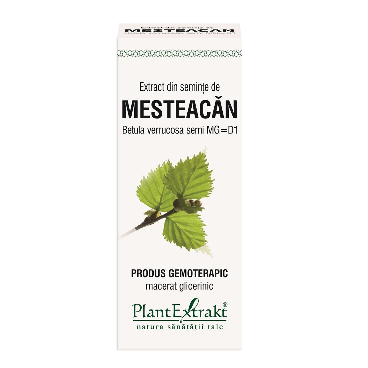 Extract din semințe de Mesteacăn, 50 ml, Plant Extrakt