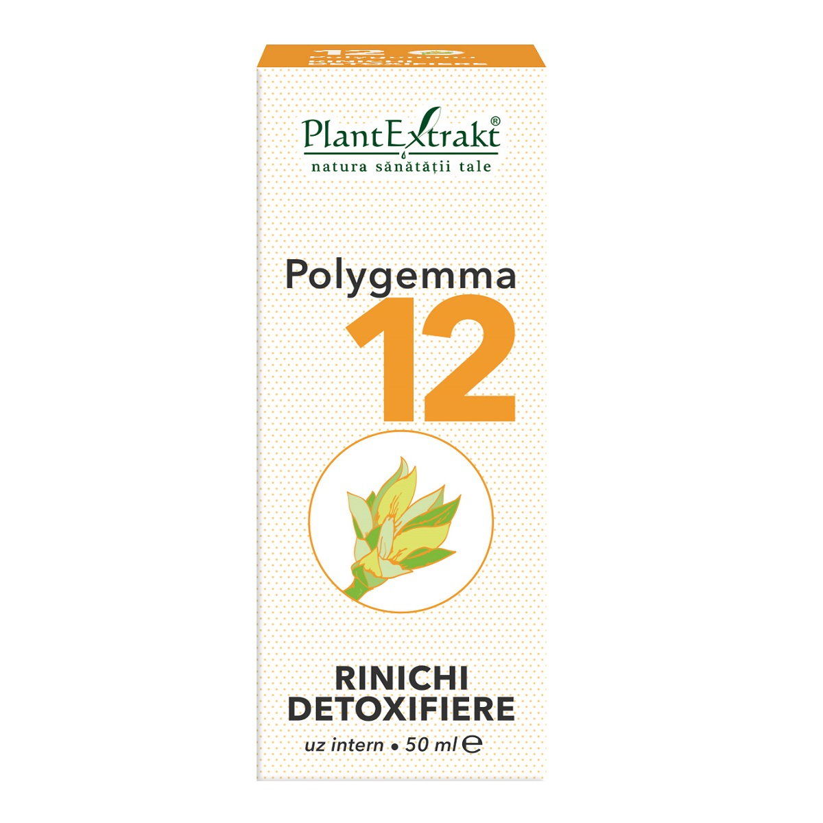 Polygemma 12, Rinichi detoxifiere, 50 ml, Plant Extrakt
