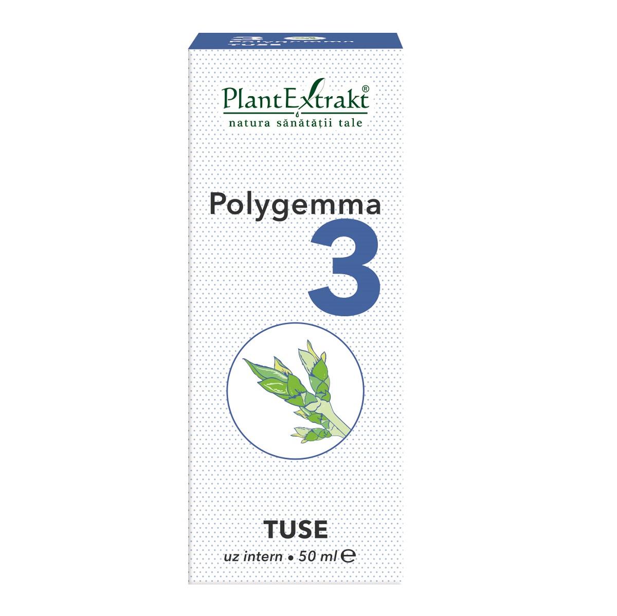 polygemma 16 forum)