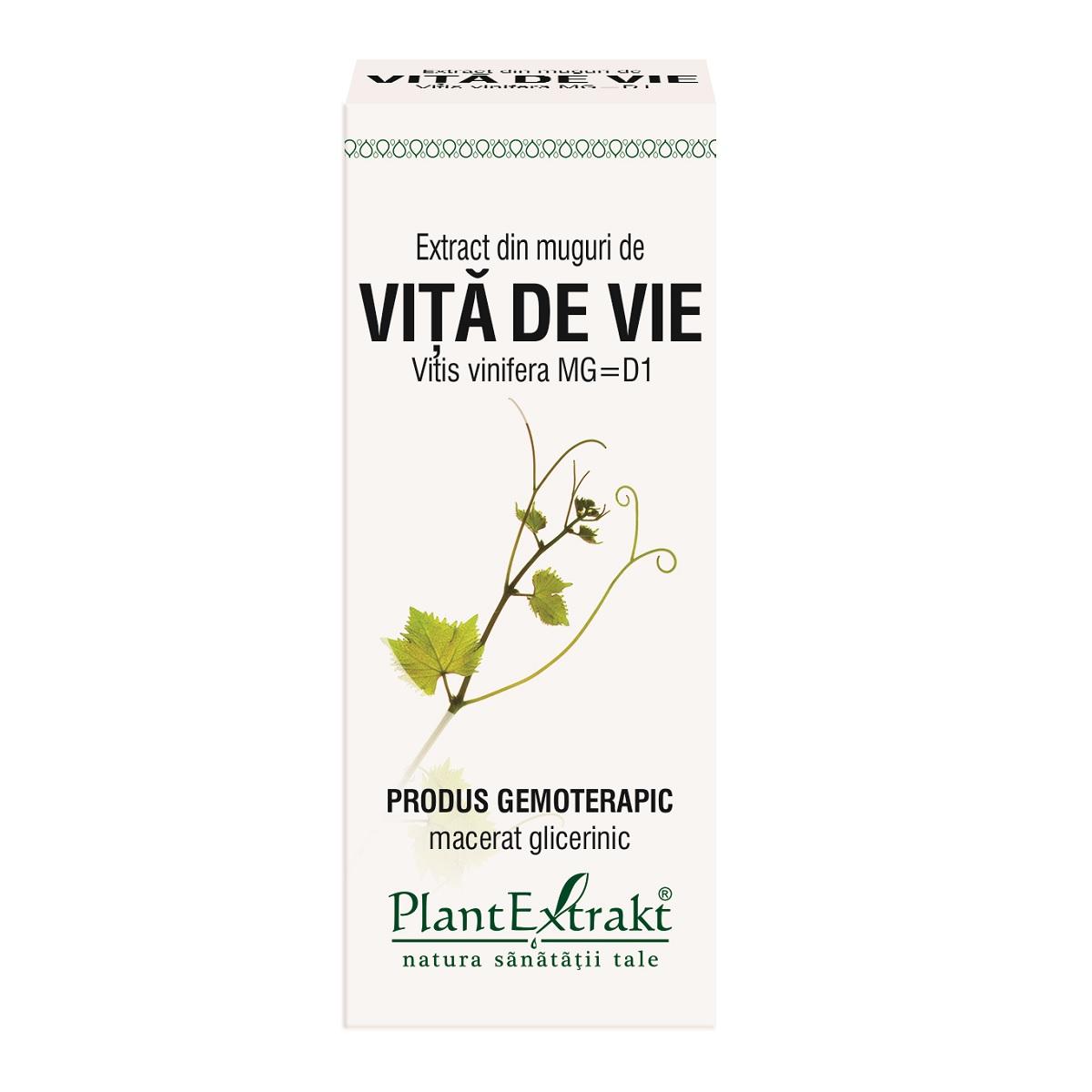 Extract din muguri de Viță de Vie, 50 ml, Plant Extrakt
